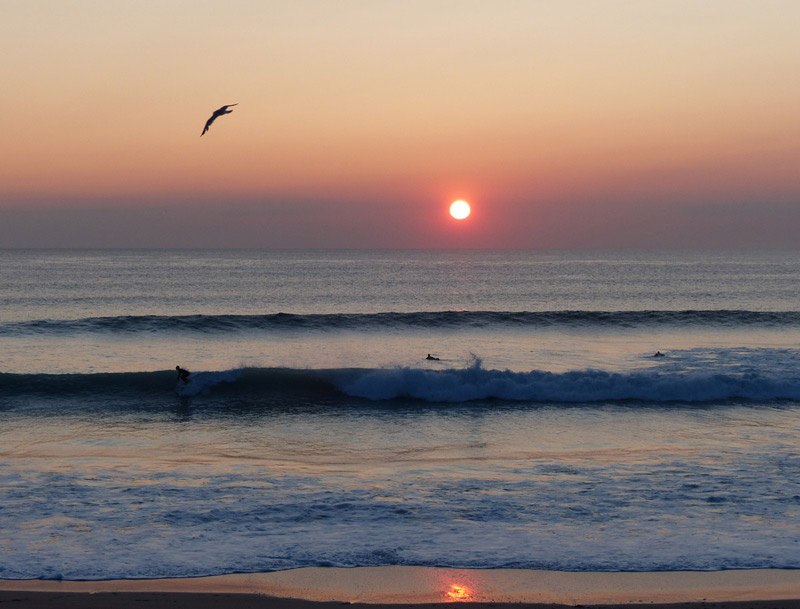 Tweet Bus posters - surf sunset at Fistral Beach