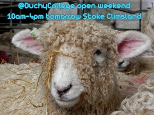 Duchy College Open day